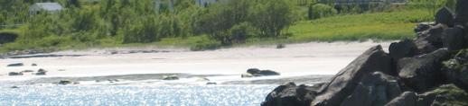 Sandland  2.jpg
