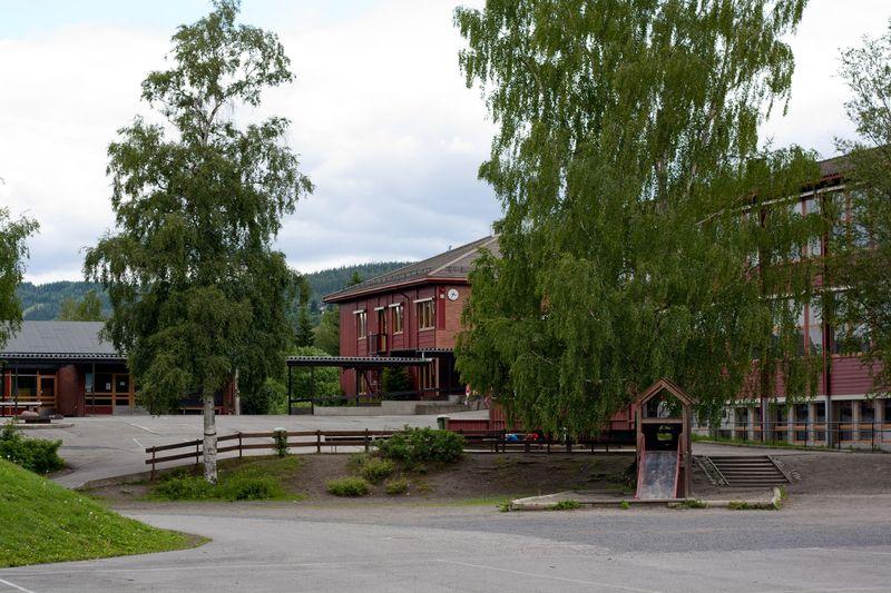 Søre Ål skole