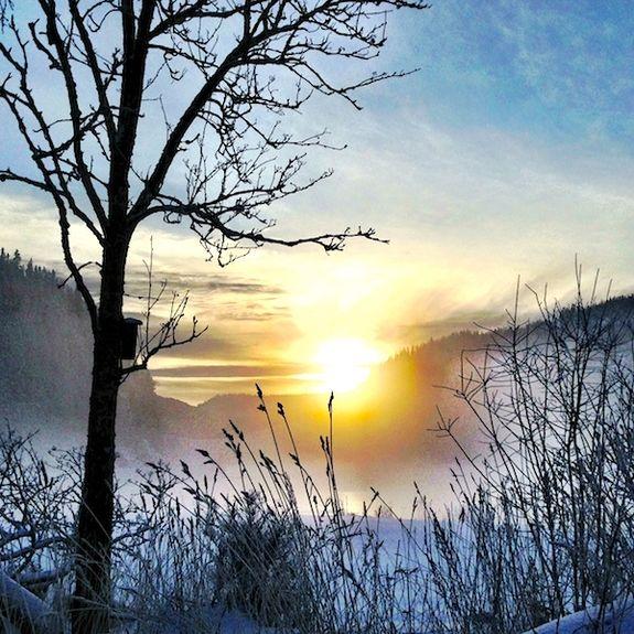 Vinterbilde fra Trøndelag