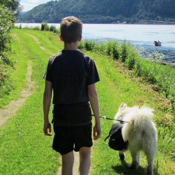 Gutt som går tur med hund