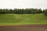 Bilde av nypløyd jorde og grønnt jorde