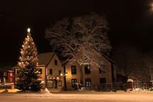 Juletre på Lilletorget. Foto Jørgen Skaug