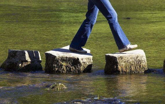 vann stein