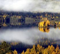 Lågen. Foto Esben Haakenstad