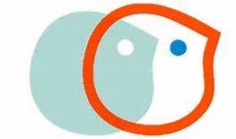 Burdir logo