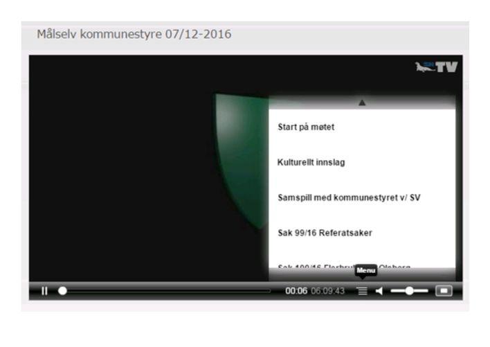 kommunestyre på WEB-TV