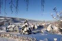 Samarbeid mellom kommunene. Foto: Esben Haakenstad
