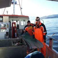 Fiskere Foto Mariann Agledahl
