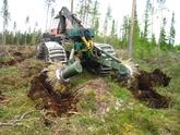 Markberedning gir en rekke fordeler når du skal få opp ny skog etter hogst. Bl.a. reduseres faren for angrep av gransnutebiller og mus.