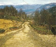 Veg mellom Etne og Skånevik