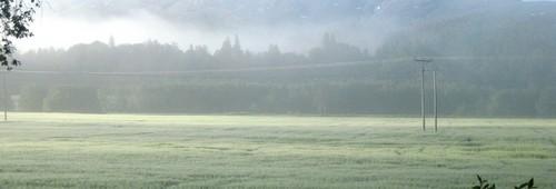 miljø og landbruk, åker_1001x519