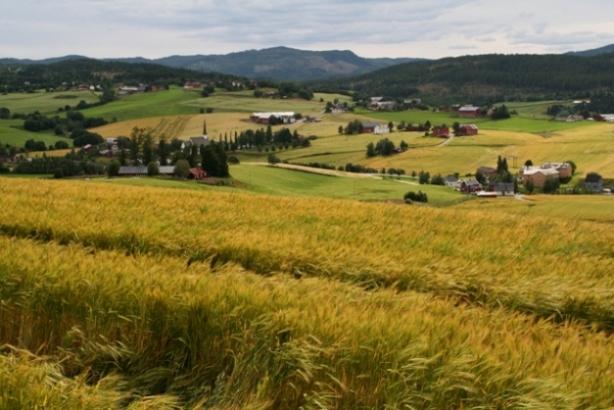 Utsikt fra kirkeruinene på Husaby