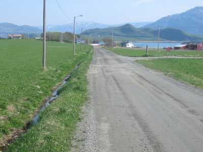 Veg Mindland  060504
