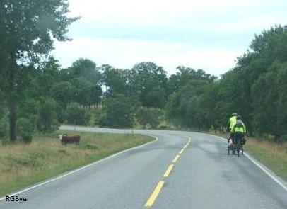 På sykkel gjennom kulturlandskapet på Tjøtta