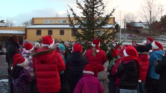 Juletre i skolegården