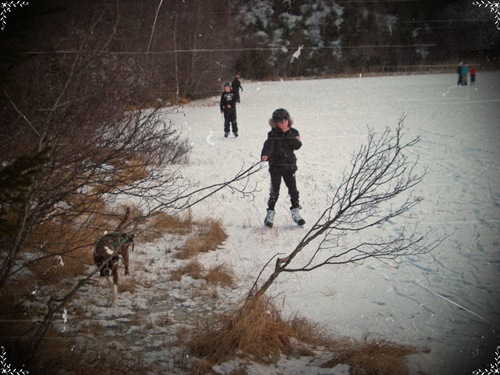 Elev på skøyter og en hund