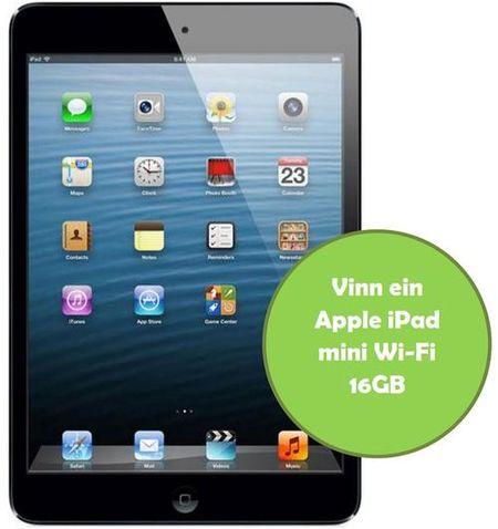 iPad_mini_500x531