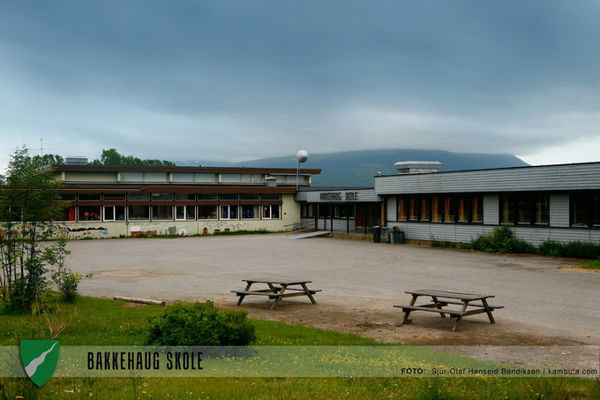 Bakkehaug Skole