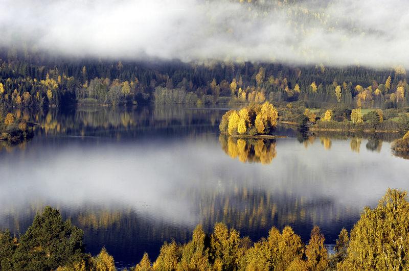 Lågen. Foto: Esben Haakenstad