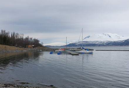 Båter i havna på Målsnes
