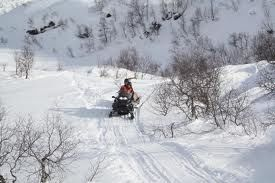 Snøscooter i kjøring