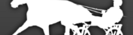 Artikkel logo siluett hest