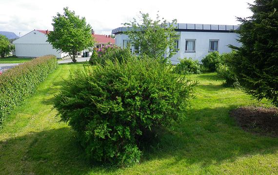 Hagen ved Aukraheimen