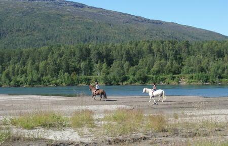 Hest på strand langs Målselva