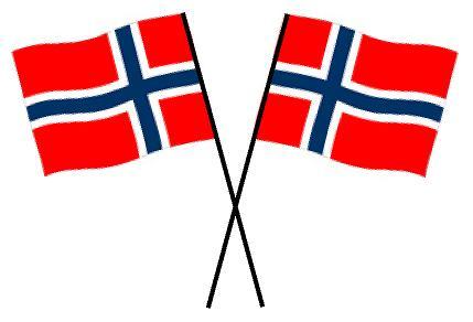 17mai flagg