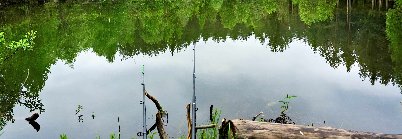 Illustrasjonsbilde av fiskevann og fiskestenger