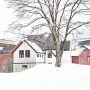 Tre og hus Skansen II