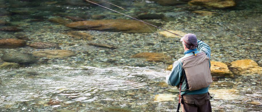 Bilde av fisker i elv