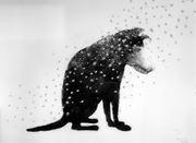 Snø (hund ny)