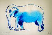 Selvlysende Elefant i rommet