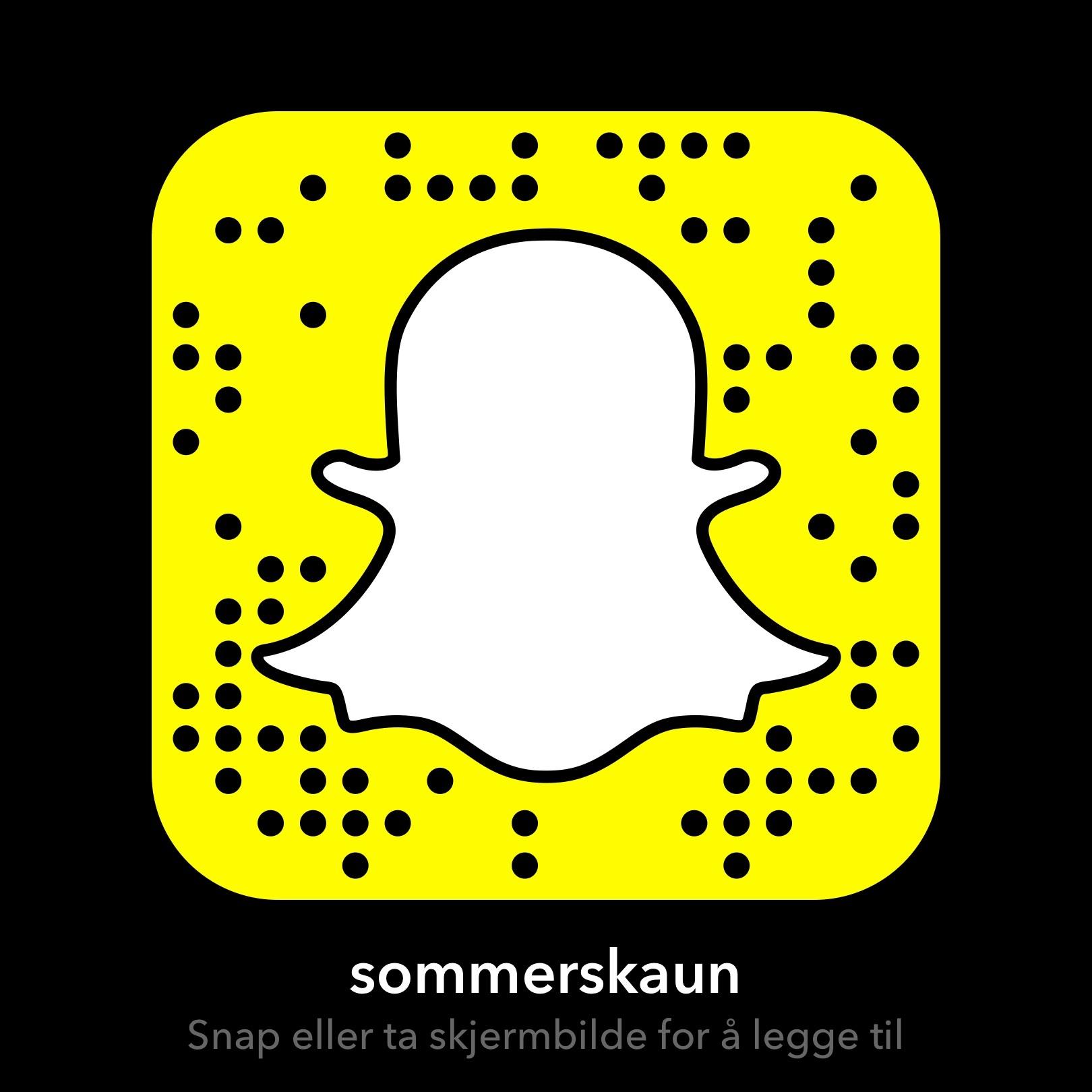 Snap SommerSkaun.jpg