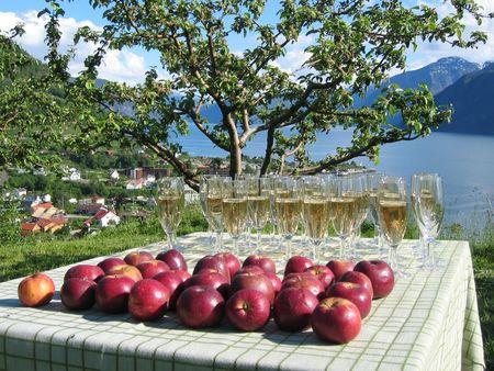 eple-og-sider-i-frukthagen