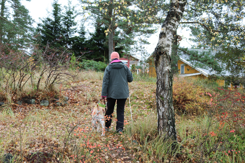 Høst i skogshage. Kvinne med rosa lue går, med ryggen til kamera, sammen med sin førerhund.