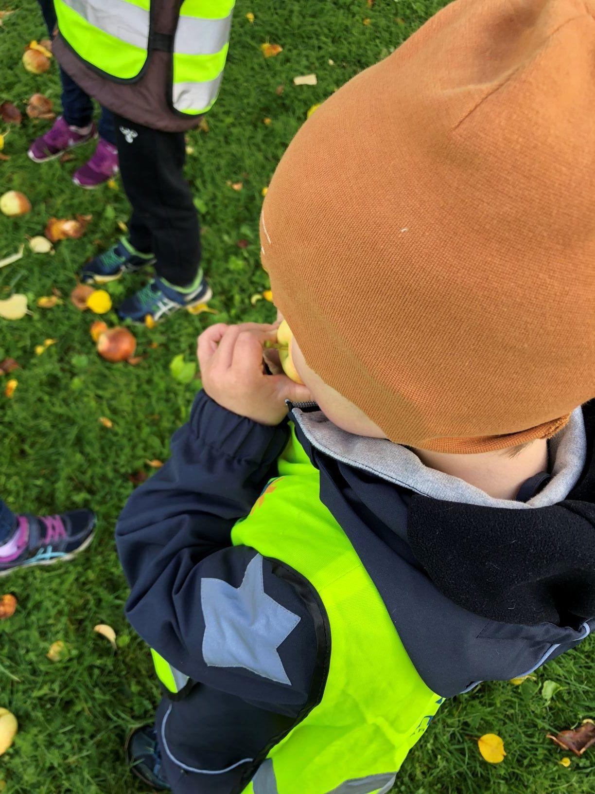 barn som spiser eple