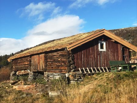 Foto 1 - Steinar Grønn