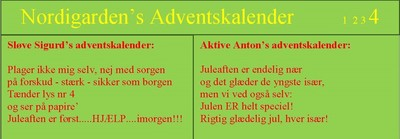 Nordigardens adventskalender_4_400x139.jpg