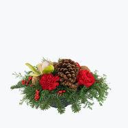 180634_juleblomster_dekorasjon