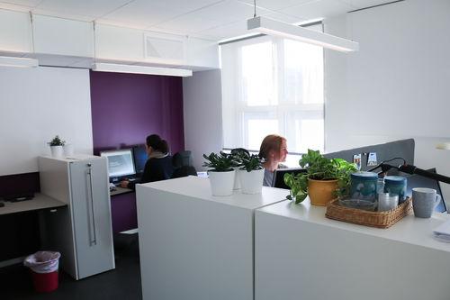 Åpent kontorlandskap, to kvinner sitter å jobber ved hver sin arbeidsstasjon.