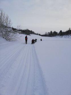 Ski- og akedag