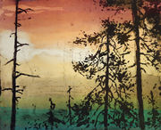 nytt skog