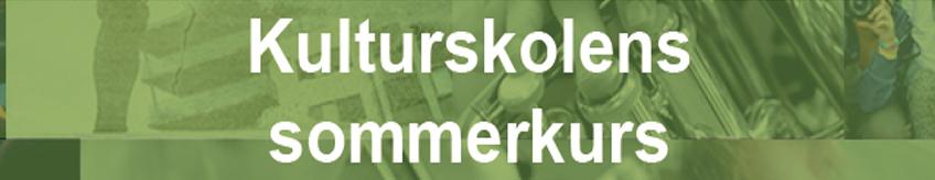 Sommerkurs 2019 banner.jpg