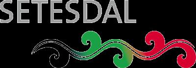 Visit Setesdal Logo