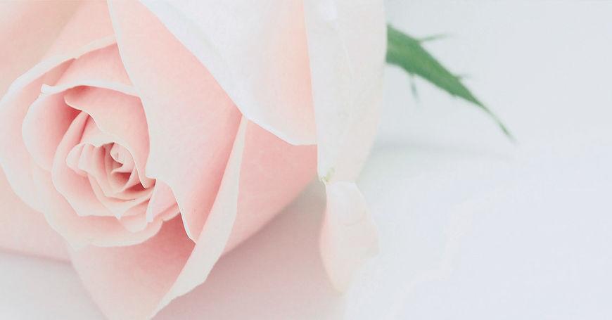 blomster til begravelse og kondolanse