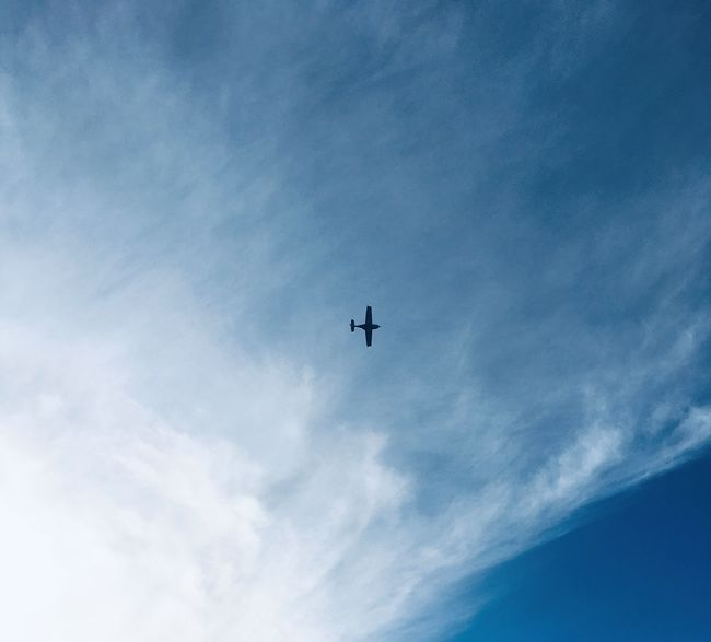 Fly på himmelen