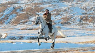 Kim til hest_400x225.jpg