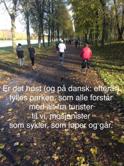Versaille løp